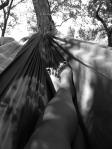 Feet - in a hammock